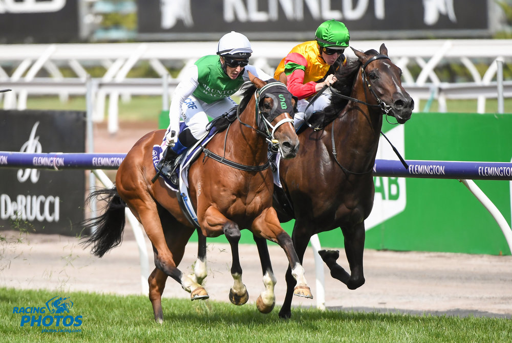 Image courtesy Racing Photos - Another angle of the C.S. Hayes finish. The Inevitable is dwarfed by Age of Chilvary.