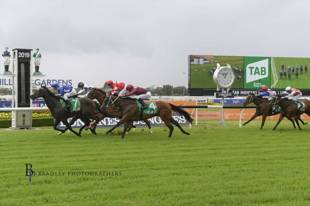 Image courtesy Bradley Photos - Zardoro wins from Caprera (inside) with Sunlit (wide out) and Burning Crown (red colours).