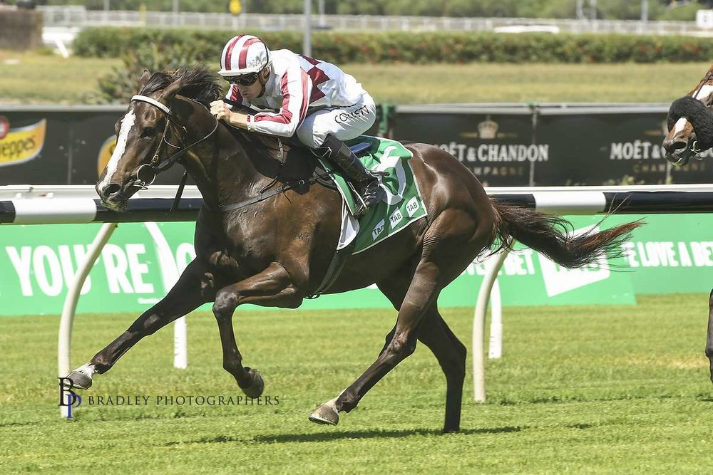 Image courtesy Bradley Photos - Another one of Terry's dual Highway winners, Fui San (Jason Collett) winning at Randwick 3/03/2018.