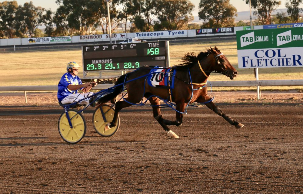 Image courtesy National Trotguide - Our Uncle Sam at Parkes 31/12/2017- He won this one by 28 Metres.