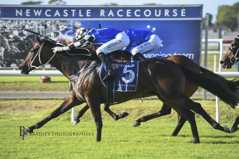 Image courtesy Bradley Photographers - Princess Posh and Brenton Avdulla get up to nail Savatiano in the Group 3 event.