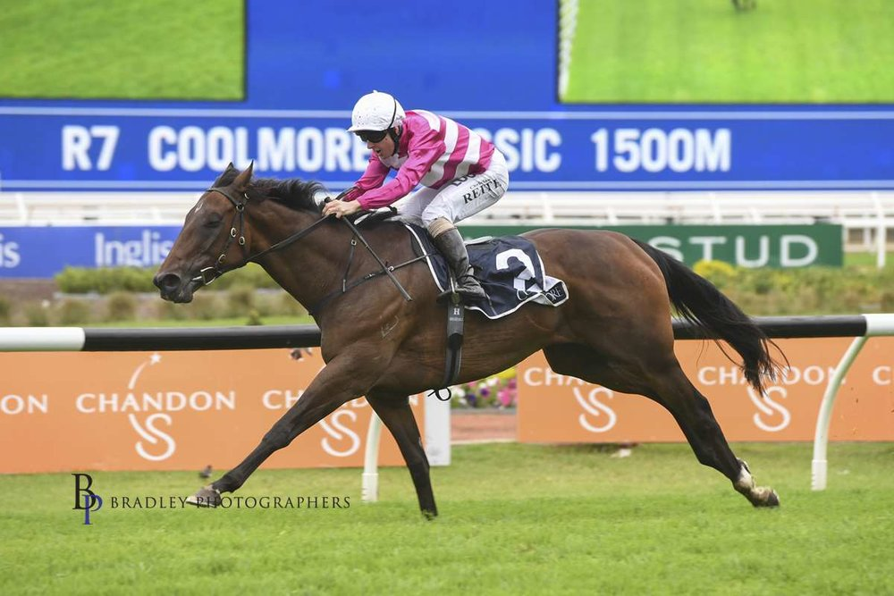 Image courtesy Bradley Photographers - Dixie and Christian Reith had the Coolmore to themselves.