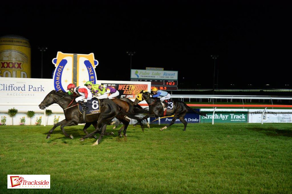 Image courtesy Trackside Photography - Kevin Kemp provided the Quinella in the 2014 Weetwood Hcp with Typhoon Red and Kempelly.