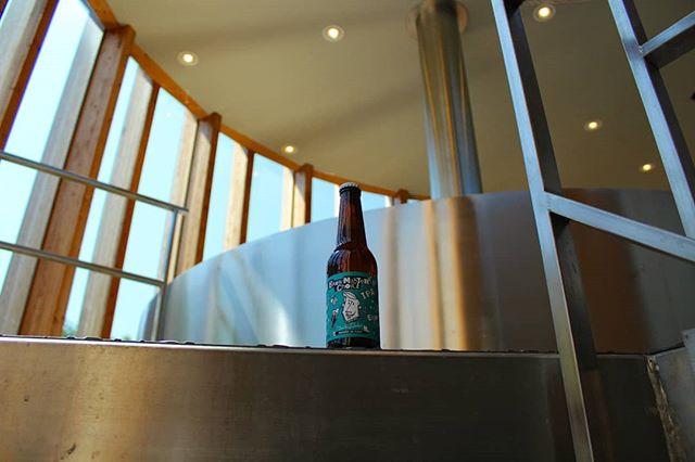 Dai che è #beverdi! La #brewmasterschoiceipa (qui nella nostra meravigliosa sala cotte con vista #Appennini) vi aspetta questa sera, tra chips e pizza 🍕 per una sana bevuta confortante 🍻 #cheers! . . . #birra #brewmasterschoice #ipa #italianbeer #birraitaliana #drinkbeer #beeroftheday #beeroftheweek #brewery #brewhouse #instabeer #instabrew #microbrewery #brewer #drinkcraft#beerstagram#brewlife