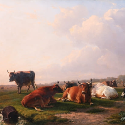cows-grays-auctioneers.jpg