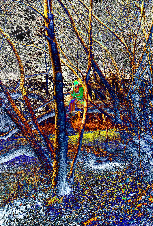 GODsDOGs , BlauRosa,  2018, 200 x 135,6 cm, Velum-Tex Samba Backlight, Leuchtstoffröhren, Holz, Karton
