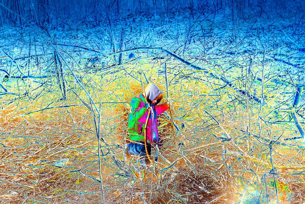 GODsDOGs, Swamp,  2018, 180,2 x 270 cm, Velum-Tex Samba Backlight, Leuchtstoffröhren, Holz, Karton