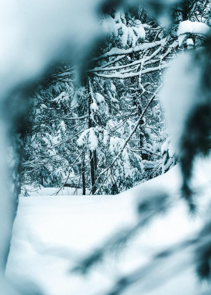 Winter of Québec - Anthony Ledoux - Photographer and Filmmaker - Photographe1.jpg