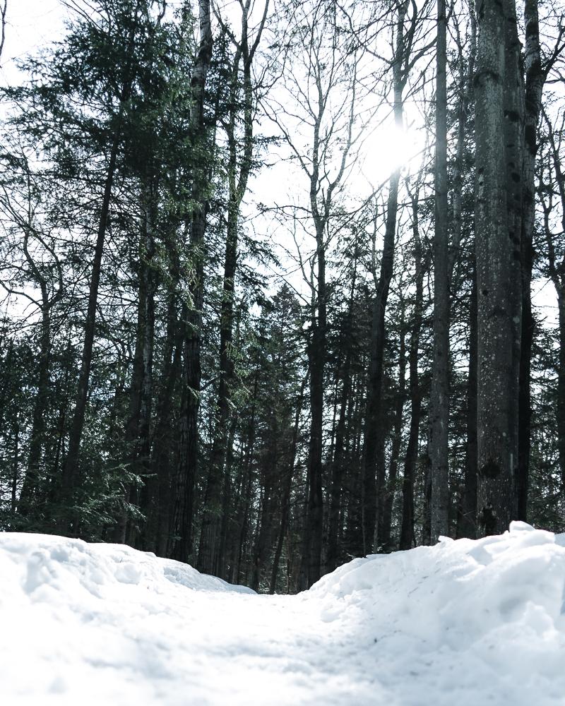 Winter of Québec - Anthony Ledoux - Photographer and Filmmaker - Photographe22.jpg
