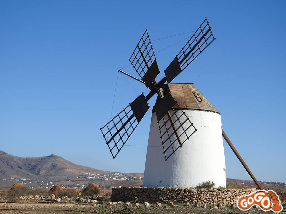 GoGo excursions - find the secrets of Fuerteventura, Canary Islands with our small group days out.