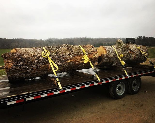 Picked up a big ol' white oak today that fell just west of Ashland 🦚 * * * #localwood #localslabs #liveedgewood #liveedgetable #diy #buylocal #rva #makersgonnamake #woodworking #farmhousestyle #farmhousekitchen #woodslab #hardwood #woodtable #woodbench #woodmizer #housegoals