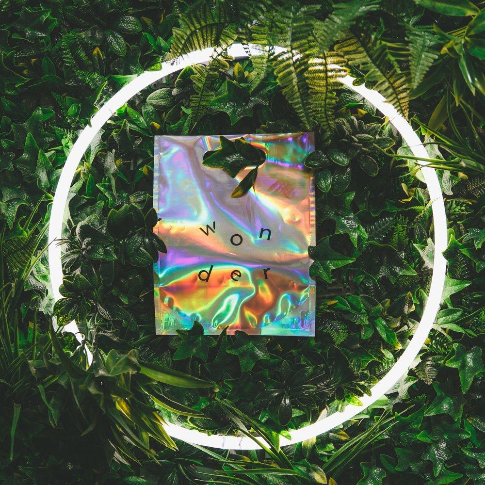 Neon+Plants_.jpg