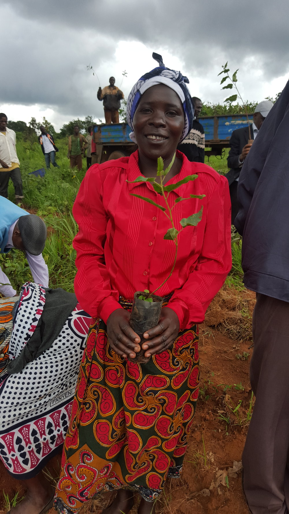 A Cooperative farmer with her seedling