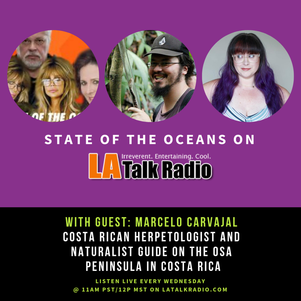 ThatVeganWife-LA-Talk-Radio-Sea-Shepherd-Barbi-Twins-01-16-19
