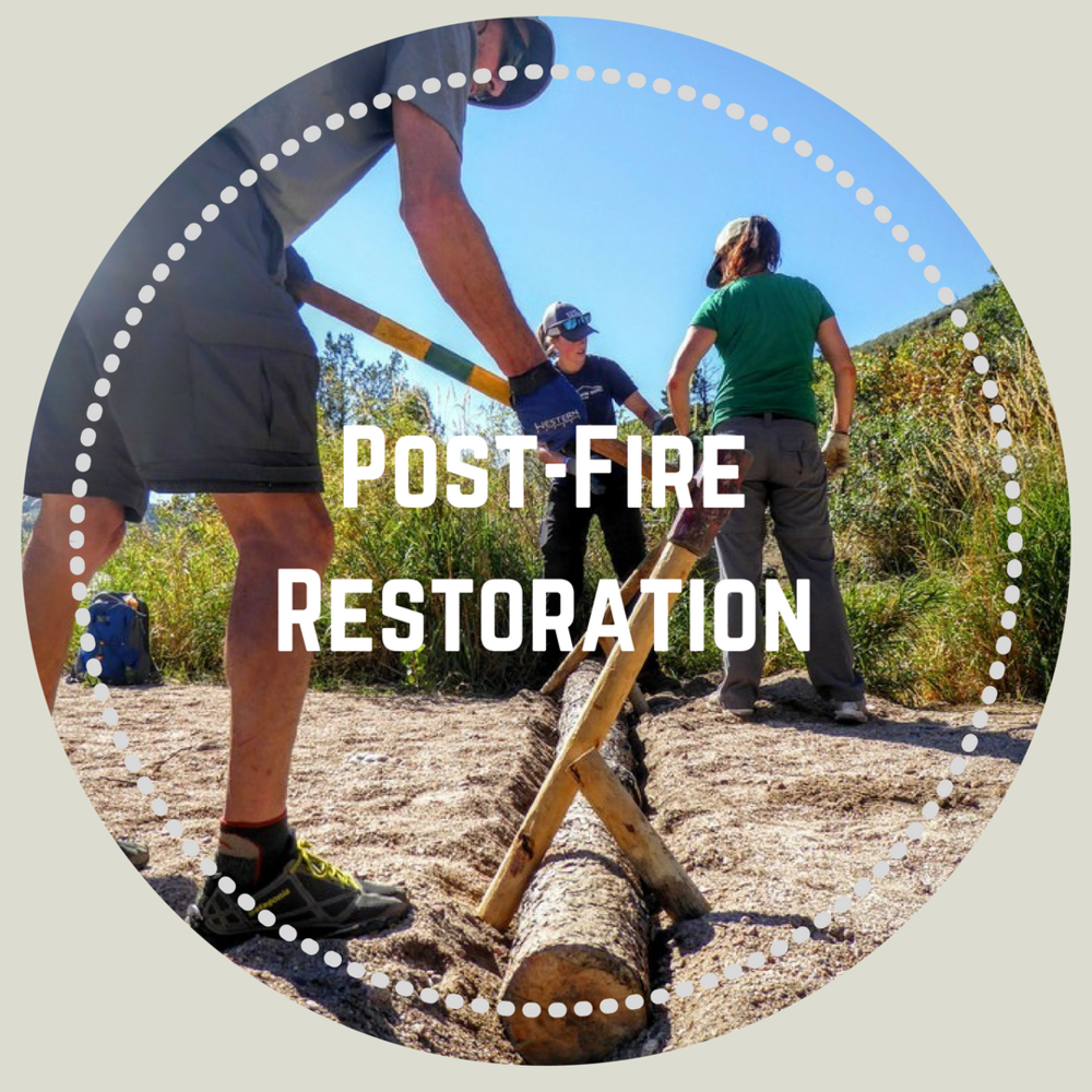 post-fire-restoration-cprw.png
