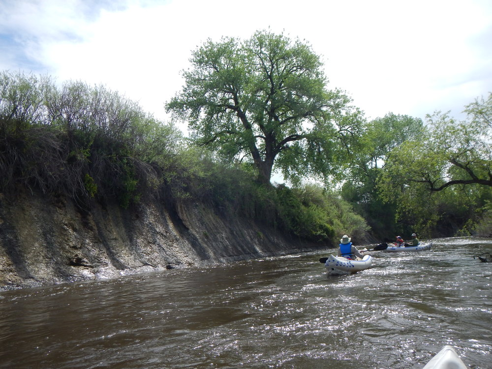 Photo taken near I-25 during an assessment of the lower Poudre river.