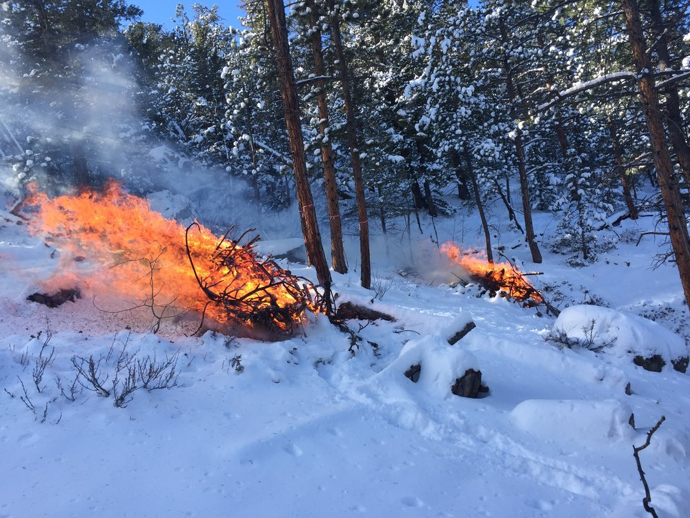 Pile burning at the Scout Ranch for our Elkhorn Creek Forest Health Initiative partner project.