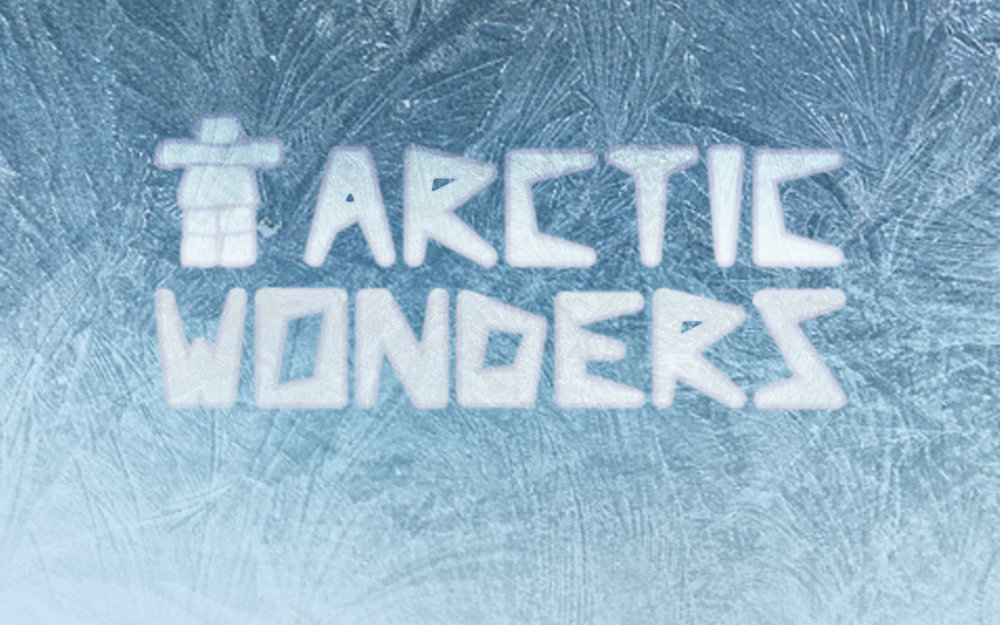 arctic-wonders-kids-art-course.jpg