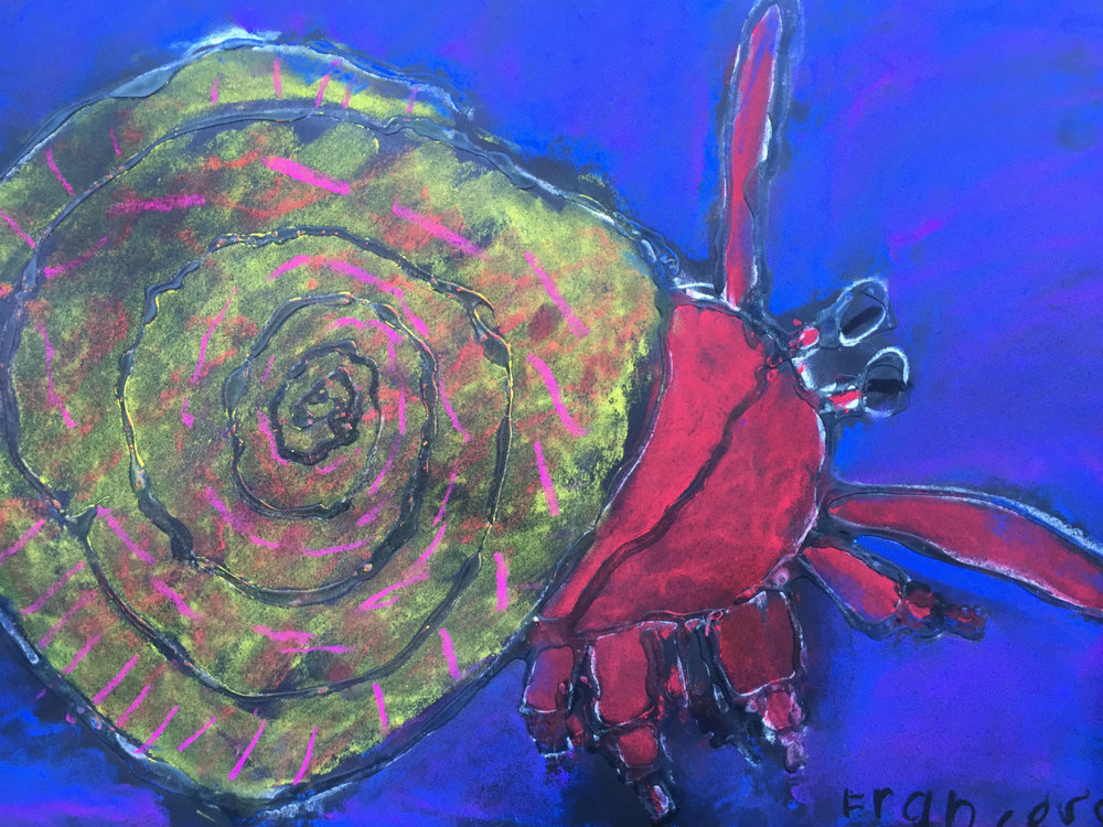 Pastel Hermit Crab