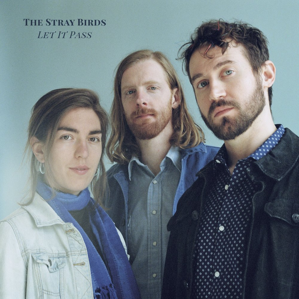TheStrayBirds_LetItPass_7MB copy.jpg