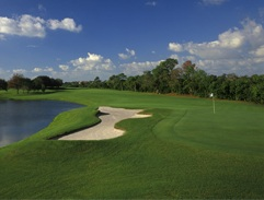 Florida golf doesn't get any better than Bayou