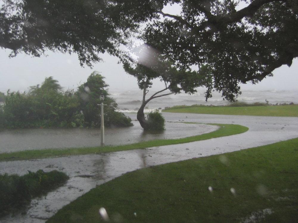 Pond yard isabel (1).JPG