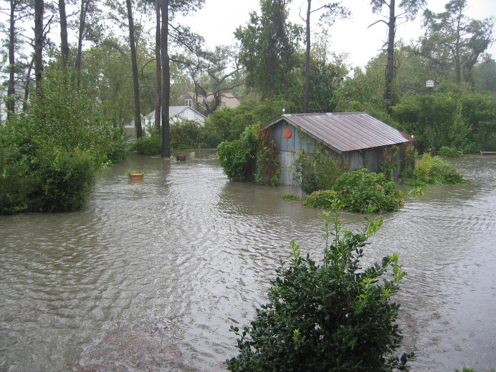 Pond yard isabel (11).JPG