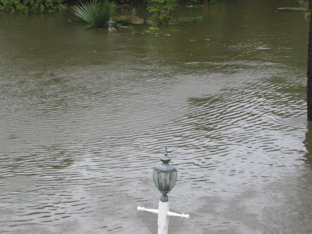 Pond yard isabel (15).JPG