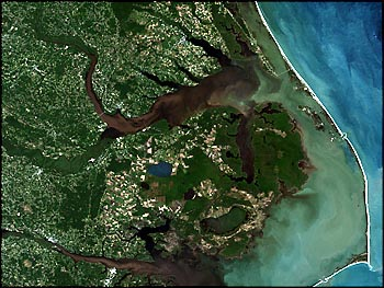 Brown sediments clogged coastal estuaries a week after the storm, as seen in this Landsat 7 image of the North Carolina coast taken September 23, 1999. Along with dirt swept away by the flood waters, the estuaries filled with human and animal waste, fertilizers, and pesticides. (Image by Brian Montgomery, NASA GSFC)
