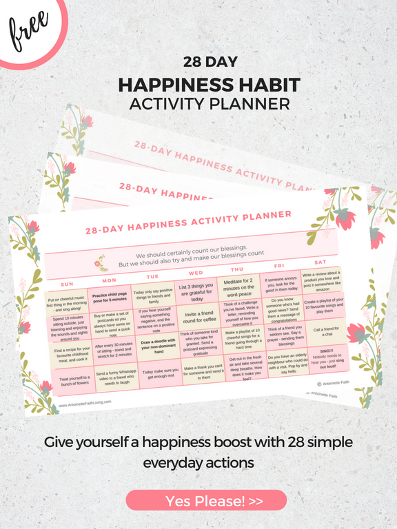 canva-happinessplanner2-a5.png