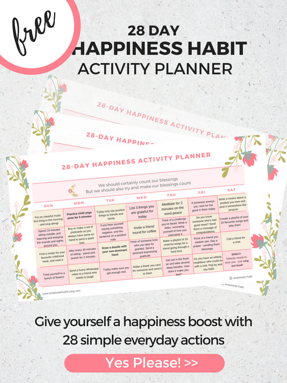 canva-happinessplanner2-a5 (1).png