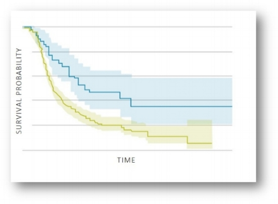 KM curve.jpg