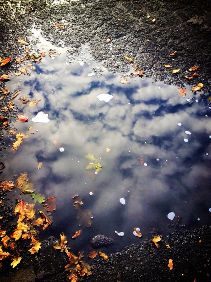 Sometimes you need to look down to see the beauty of nature. Fall showers had just moved through & I happened to look down at this puddle to see this amazing reflection of the clouds above. 10/2013