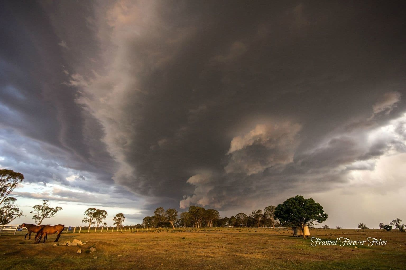 Taken just outside Warwick at the End of October 2014. Spent all day taking pictures at the Rodeo then a nice little storm formed. Was taken out this day by Chris with 2 other friends Megs and Michelle. Had a Ball. SE Qld Australia