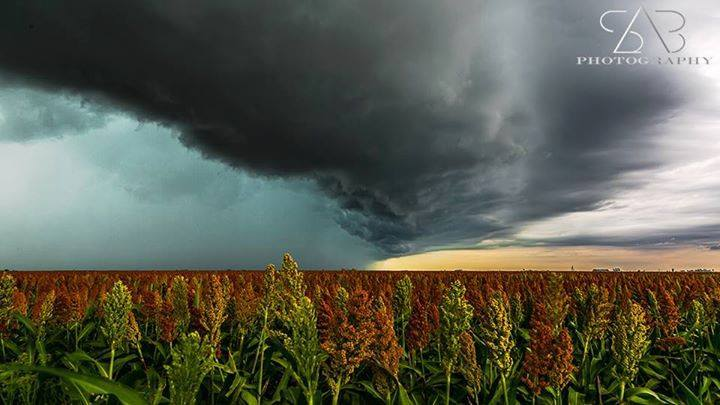 Storm over crops west of Toowoomba QLD Australia on January 14th 2015..