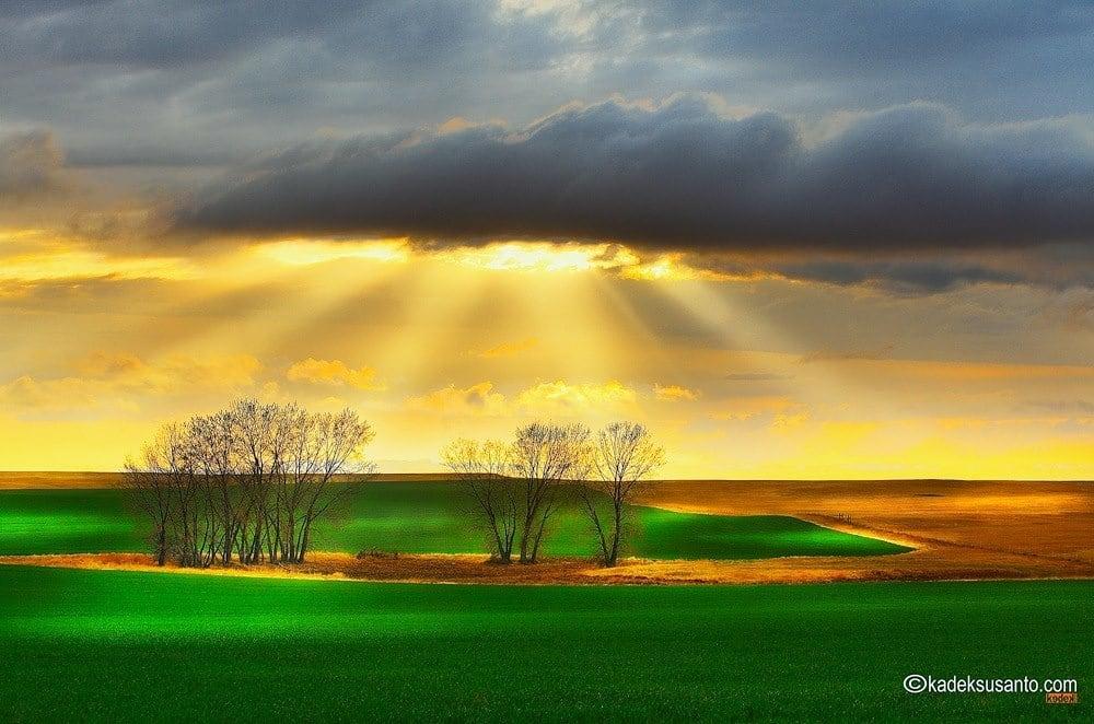 THE BEAUTY OF LIGHT South Dakota