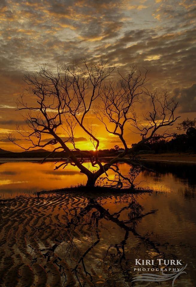 Sunrise this morning at Bushland Beach, Townsville, Australia 24/01/2015 1/125 sec f7.1 ISO100 +0.0EV