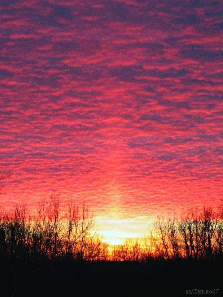 Tonight's beautiful sunset colors complete with a sun pillar. ~Metcalfe Co. Kentucky