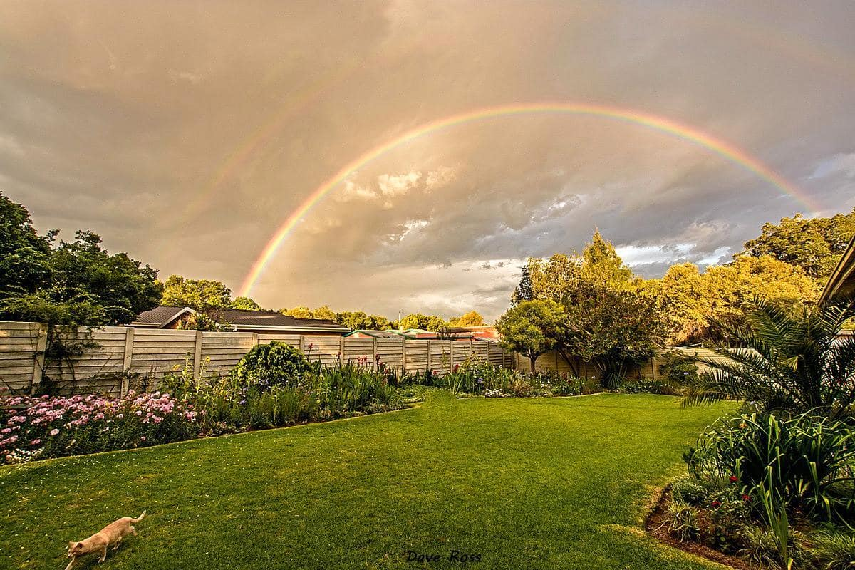 I came home to this after a great thunderstorm. Kroonstad - Free State, South Africa.