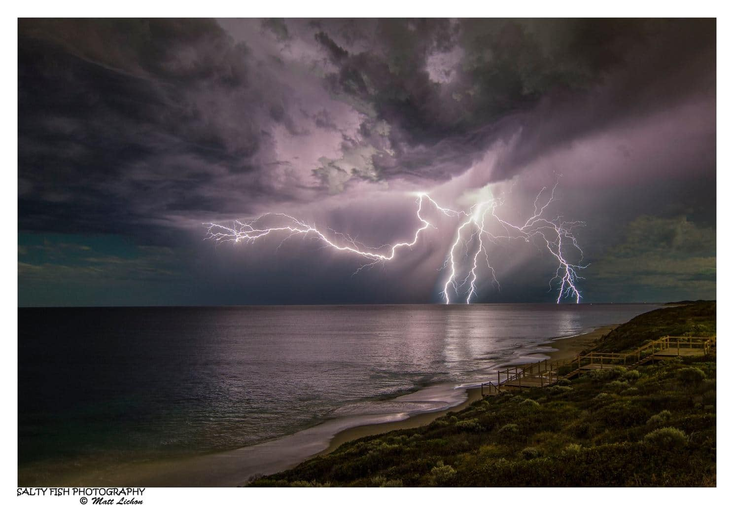 THE CREEPY CRAWLER — in Perth, Western Australia.