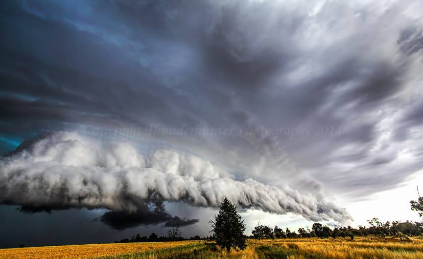 What started out looking to be a shelf-like structure became a dramatic supercell with unconfirmed tornadoes near Urana, NSW Australia - Nov 9th 2011. — with John Allen and Troy Barrett.