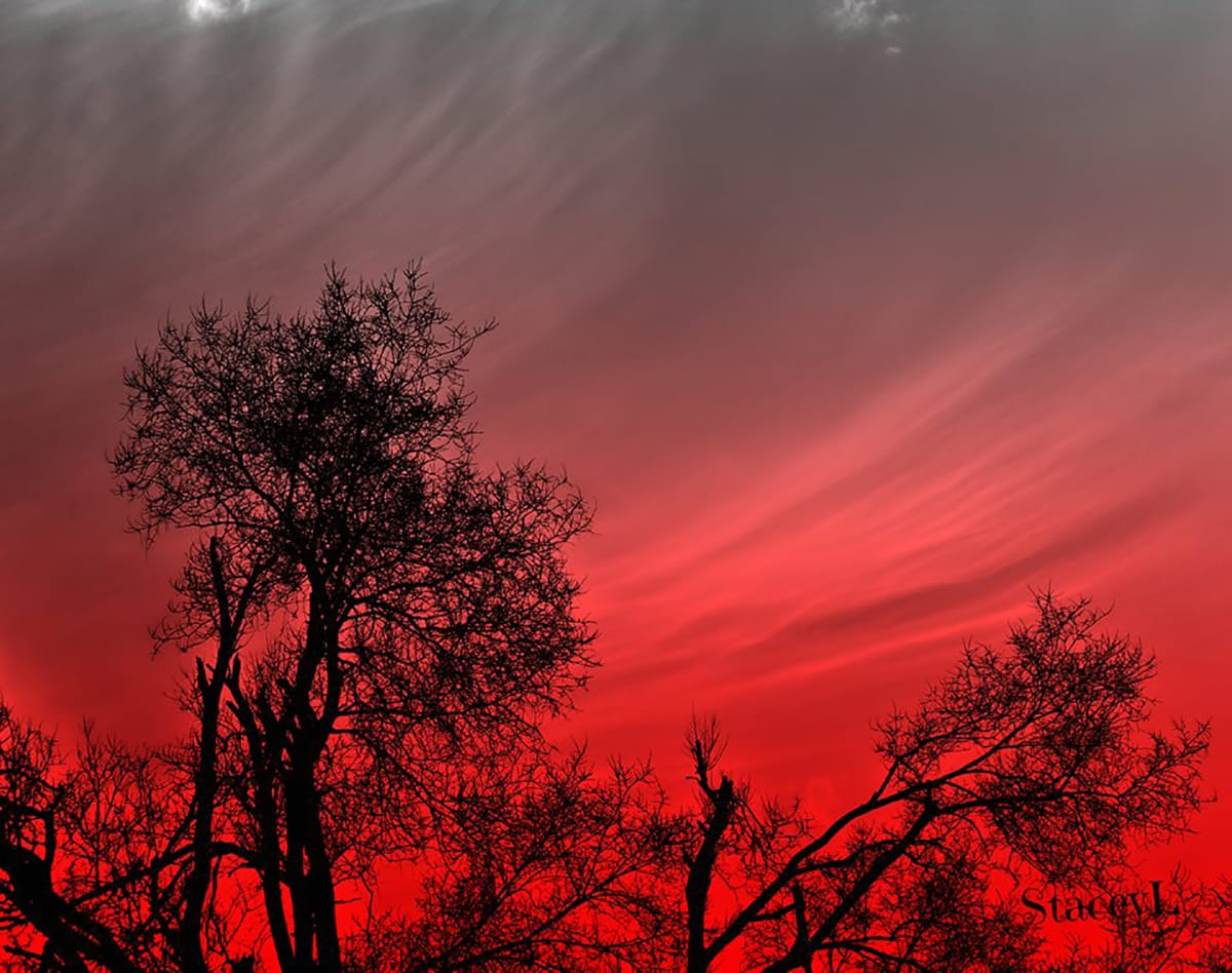 Roses are red, Violets are blue Sharing a cirrus sunset With a little extra Valentine hue. — in Middleville, Michigan.