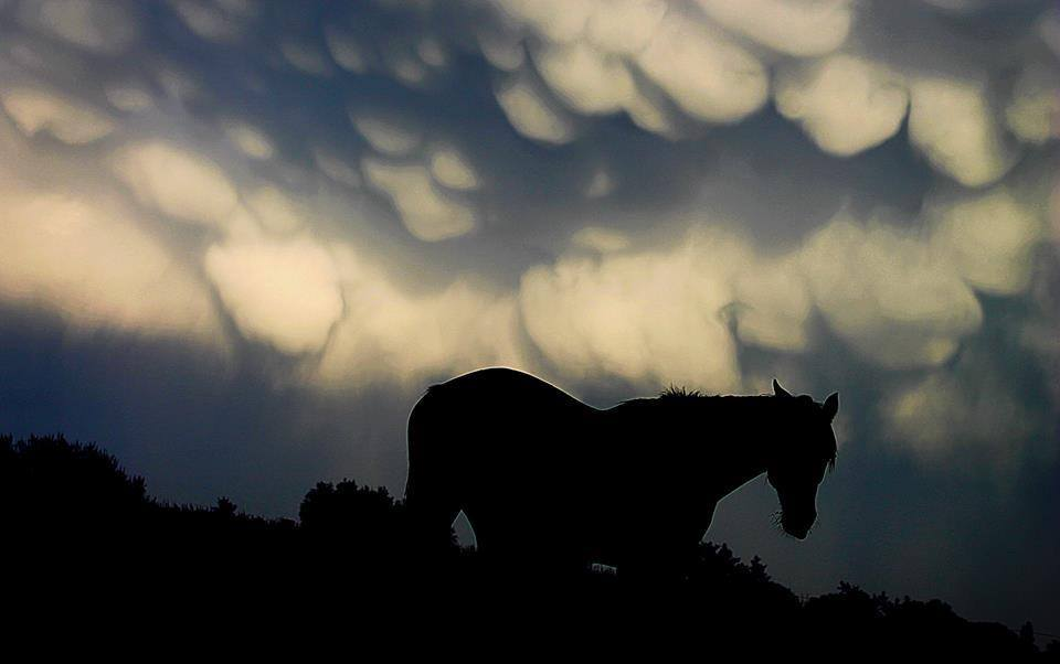 Just added to the group, thank you for that! My entrance will be mammatus clouds, Belgium