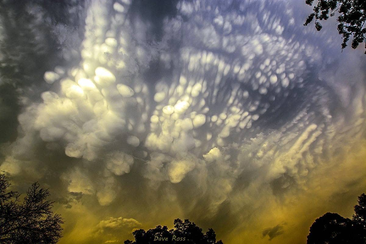 Mammatus, shot from the roof of my house last week. Kroonstad, South Africa.
