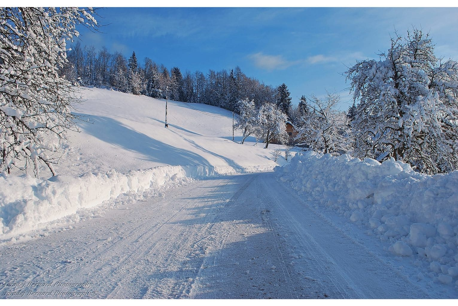 20 inch snow this morning, perfect Winter Idyll Stirpnik, Slovenia