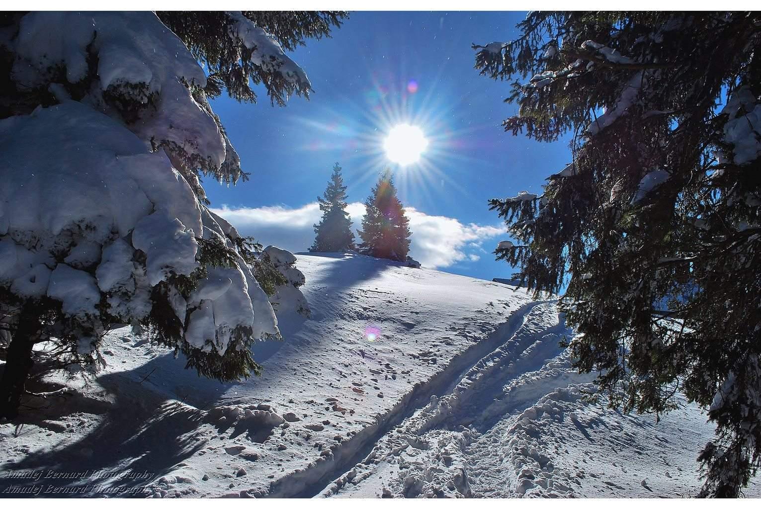 Gorgeous winter day on Blegoš, Slovenia