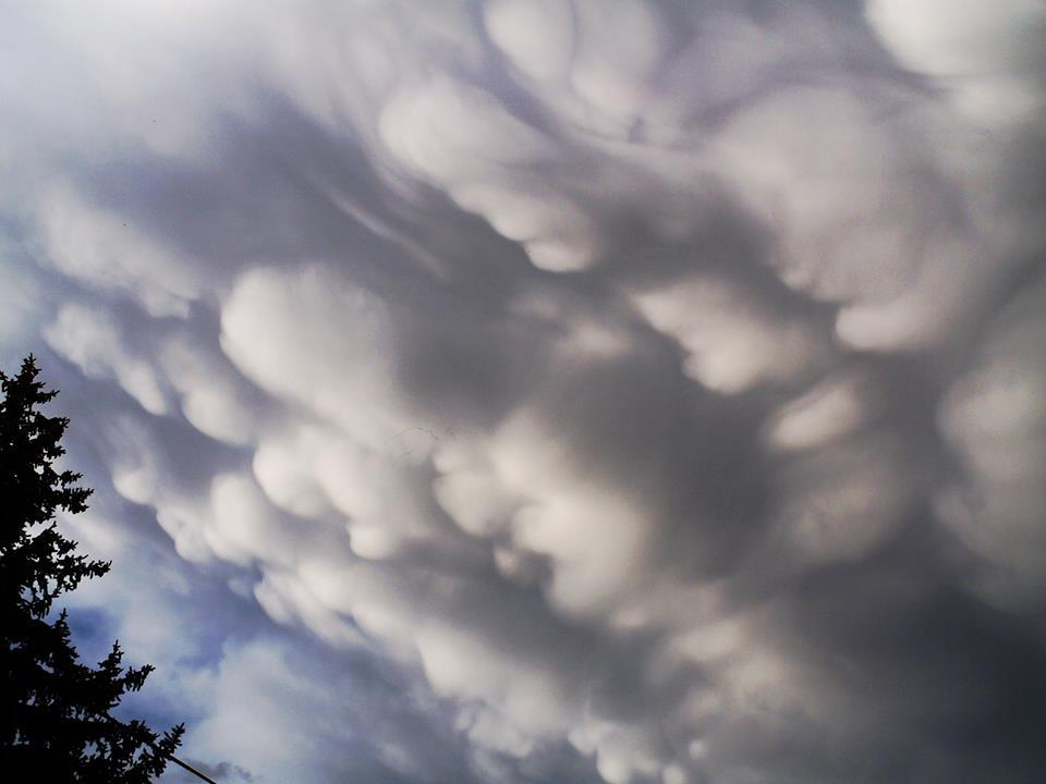 """09/25/2014 - Mammatus Clouds over Klamath Falls, Oregon. These formed after a thundershower passed through my area with a few rumbles, some 0.50"""" hail and a rainbow. I was so focused on these that I did not take a picture of the rainbow."""