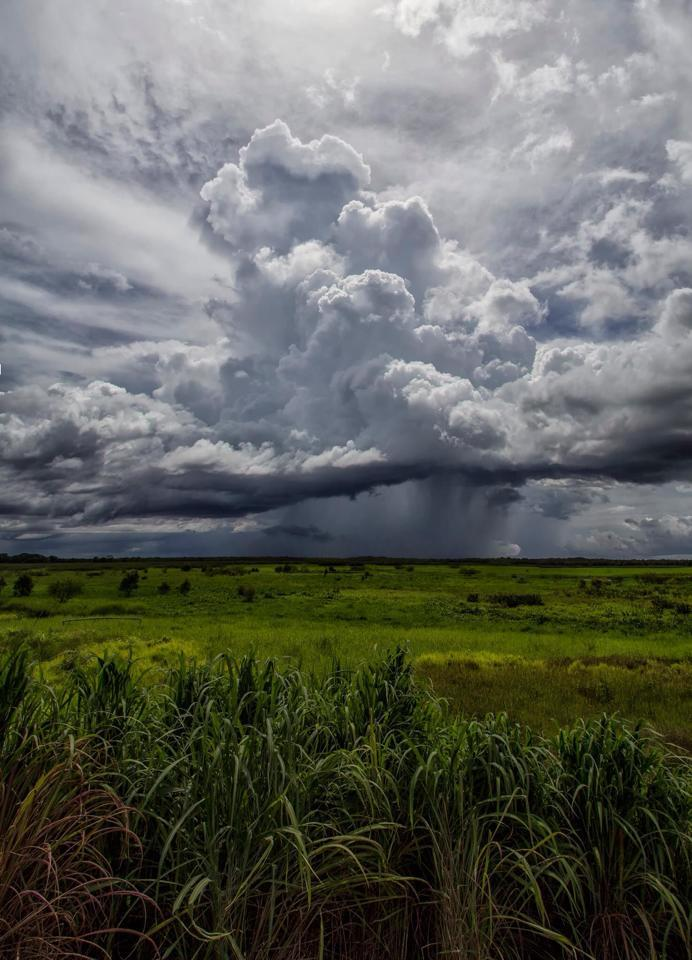 4 image vertical pano of a storm developing over flood plains of the Northern Territory.
