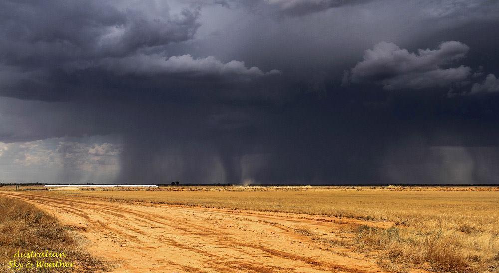 "A ""rainshaftnado' near Morundah in southern New South Wales....30th November 2011"