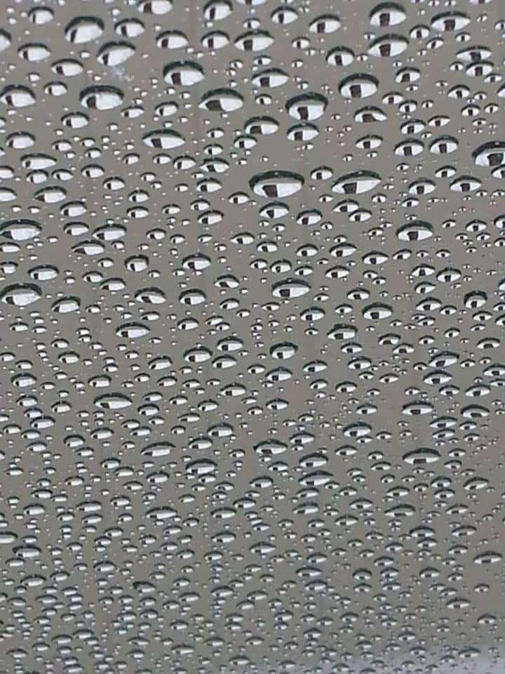 Here is a pic i took with my cell phone.. it is the rain on my windshield, looking at a fence with a big tree above the fence. The way the tree is reflected onto the drops make it look like a bunch of eyes staring at you..Thanks
